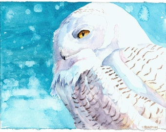 Snowy Owl watercolor print By Michael Boardman