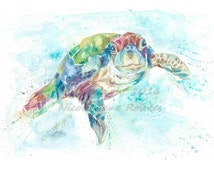A4 Green Turtle Wildlife Watercolour  , Art print by nicola jane rowles