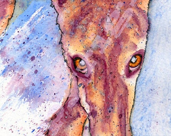 Fabulous Print or Canvas of Original Watercolour Whippet Greyhound Dog Pup Painting by Josie P. 5 sizes. Framed Canvas UK Only.  SEE DETAILS