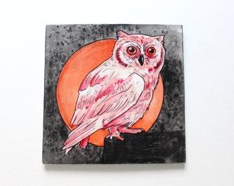 Albino owl watercolor mounted on wood. Bird illustration. Original owl art. Bird watercolour. 6x6 inches.