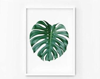 Tropical Print Minimalist art Monstera leaf Print photography Printable wall art digital file INSTANT DOWNLOAD 40x50, poster 50x70