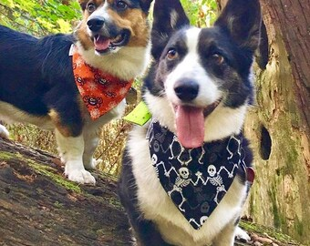 Halloween Skeletons Dog Bandana || Frightful & Delightful Glow In The Dark Dots Green || Personalized Puppy Gift || Three Spoiled Dogs