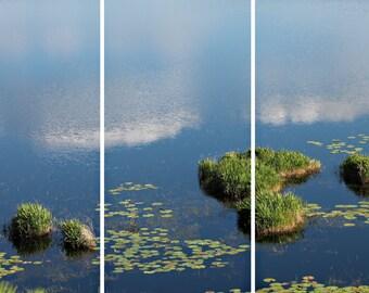 Falling Sky (split photo panels)