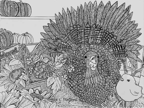adult coloring thanksgiving pages - thanksgiving turkey adult coloring pages coloring page gray
