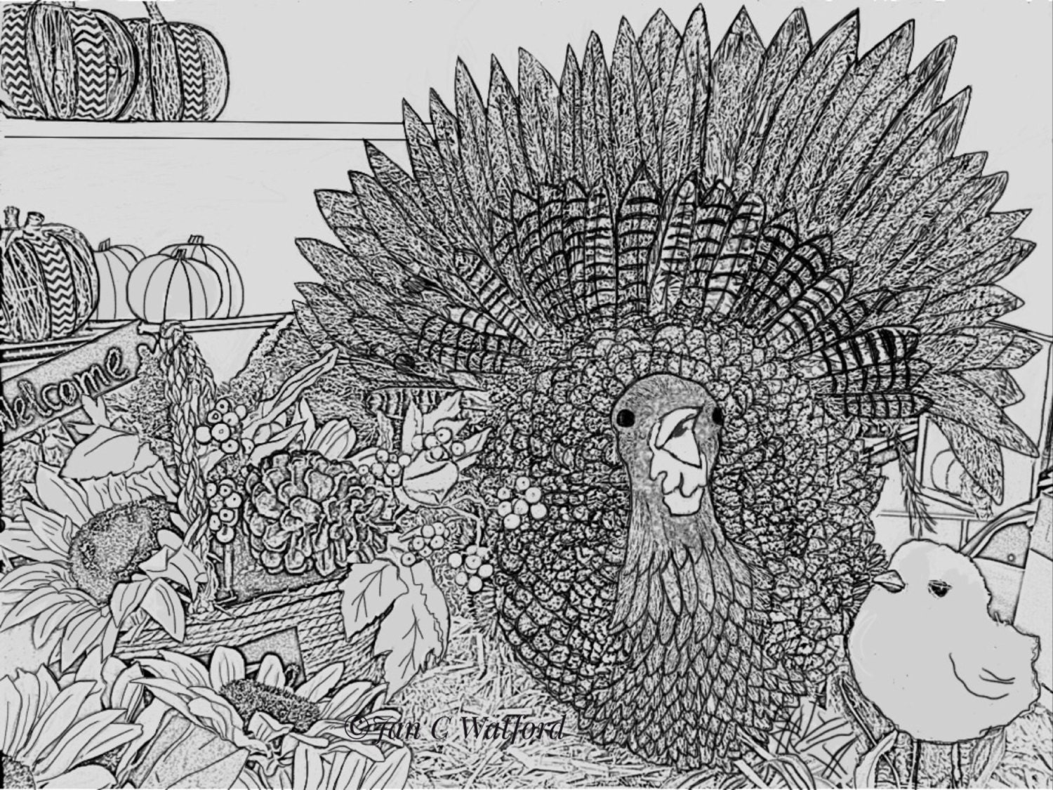 This is an image of Bewitching adult coloring pages thanksgiving