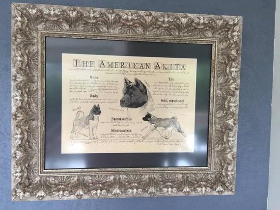 Antique styled dog standard - American Akita