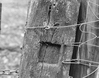 Rustic Fence Post, Chains and Fence Fine Art Digital Download - Black and White