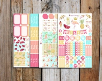 Paradise Planner Stickers Mini Kit | Premium Glossy HD Stickers for Erin Condren Planner