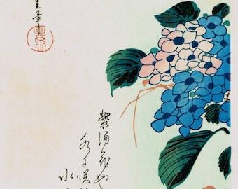 "Japanese Ukiyo-e Woodblock print, Ando Hiroshige, Flowers, Birds, Winds, Moon ""Kingfisher & Hydrangea"""