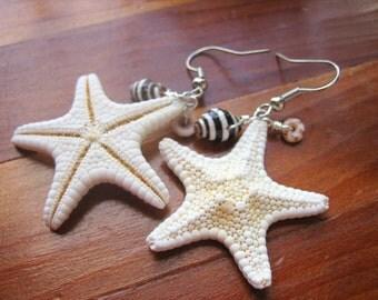 Starfish Earrings, Starfish & Seashell Earrings, White Starfish Earrings, Starfish Jewelry, Beach Wedding, Beach Jewelry, Beach Earrings