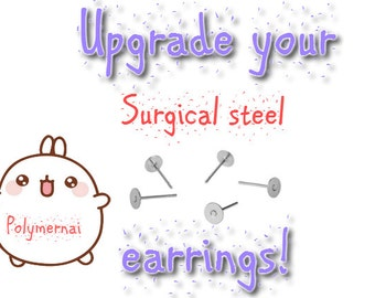 Earrings Upgrade: SURGICAL STEEL