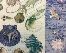 "Decoupage Napkins, Set of 3, Antique Shells 13"" x 13"" unfolded"