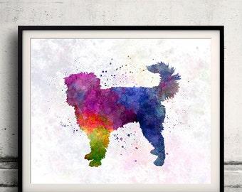 Dutch Smoushond 01 in watercolor - Fine Art Print Poster Decor Home Watercolor Illustration Dog - SKU 1492