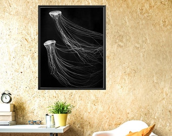 Black white jellyfish wall art, jellyfish photograph, minimal jellyfish, printable jellyfish, biolluminescence art