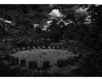 The Meeting Place. A dark and eerie fine art photographic print of the meeting place of the denizens of the wild woods