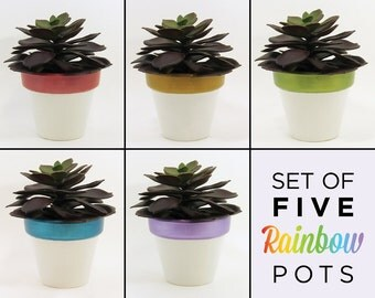 Succulent Planters, Flower Pot, Planter Set, Terracotta Pots, Air Plant Holder, Plant Pot, Succulent Pot, Indoor Planter, Rainbow - Set of 5