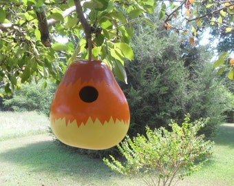 Gourd Birdhouse - Orange & Yellow
