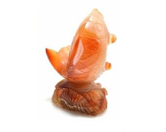Agate Fish