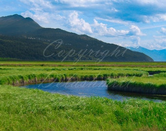 Potter Marsh, Anchorage, Alaska