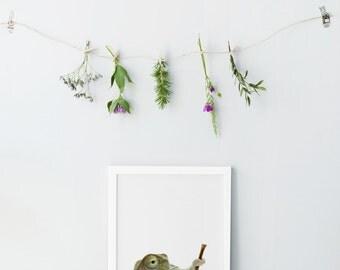 Baby chameleon print - Animal Nursery decor - Photography nursery wall art - Animal nursery prints - Printable nursery art - Cute  print