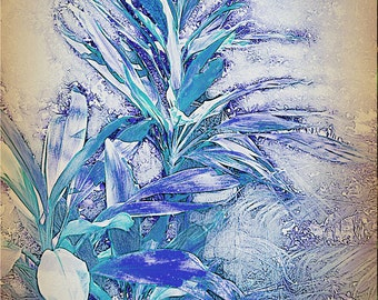 Card - cordyline blue