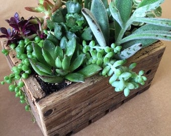 Rustic Wood Planter