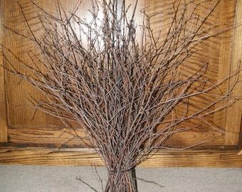 Natural White Birch Branches