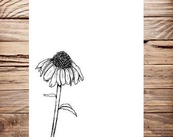 "Hand Drawn Illustration Perennial Print Design ""Perennial Love"""