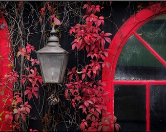 Rustic Red, Bowral, NSW Australian Countryside Photography Wall Art Print by Corinne Dany / Living Room Art / Wall Art / Photo Gallery