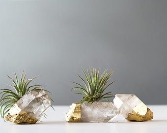 Air Plant Gold Dipped Quartz Crystal, Desk Accessories, Best Friend Gift, Boho Decor, Air Plant,Birthday Air Planter, Air Plant Terrarium
