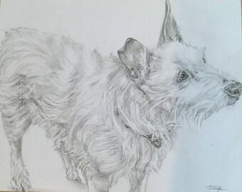 Custom Portrait - White dog