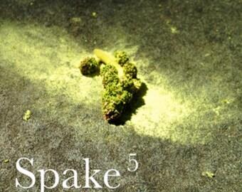Spake #5