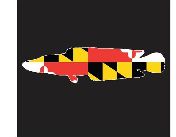 maryland flag snakehead decal snakehead sticker vehicle. Black Bedroom Furniture Sets. Home Design Ideas