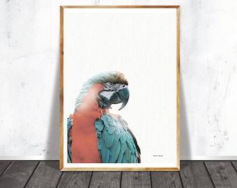 Nursery, Parrot Print, Kids Room Wall Art, Kids Poster,Baby Shower, Printable Decoration
