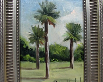 California Palm Trees  Barbara Haviland -BarbsGarden Texas Landscape Artist