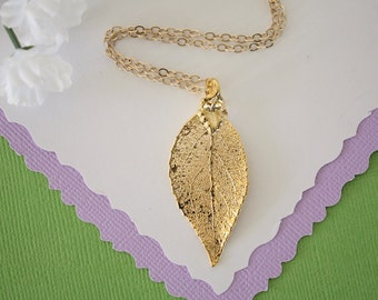 Gold Evergreen Leaf Necklace, Real Evergreen Gold Leaf, Real Evergreen Leaf Necklace, Evergreen, Gold Filled, LC161