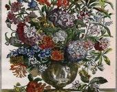 July Monthly Floral Arrangement Art Print- Furber Botanical Illustration- 18th Cent Flowers - unframed newborn anniversary wedding gift idea