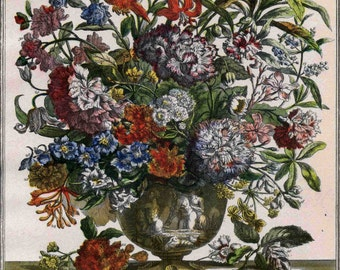 July Floral Arrangement Book Plate- Botanical Illustration- Monthly Furber Flower Print 1730 -unframed newborn anniversary wedding gift idea