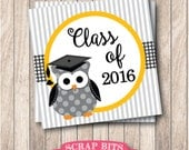 Instant Download . Graduation Owl Printable Class of 2016 Tags . Graduation Favor Tags
