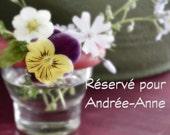 Réservé pour Andrée-Anne