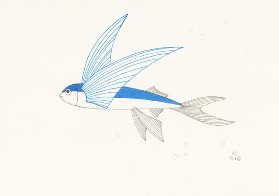 fish art flying fish small original illustration on paper