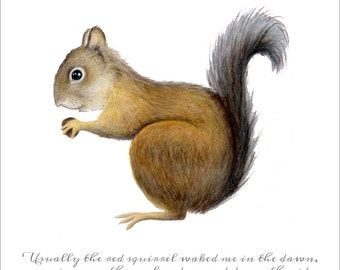 Red Squirrel Print with Thoreau Quote by SBMathieu