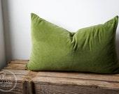 Apple green velvet pillow cover