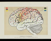 1911 BRAIN Antique print, ANATOMY print, Localization of brain functions fine color lithograph