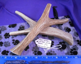 """2 Piece Medium-Large Mule Deer Antler """"Y"""" Shaped Dog Chews for Moderate Chewers ,F2pmlmdy-284"""