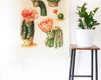 Botanical Print wall art / Echinocereus flowering cactus / Cactus wall art / Vintage print/ pink cactus flower/ cactus botanical drawing