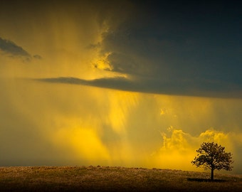 Lone Tree with oncoming Thunderstorm with Orange Cloudy Sky No.0720 A Fine Art Nature Landscape Photograph
