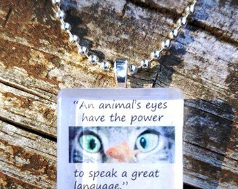 An animal's eyes have the power to speak a great language  Glass pendant.