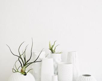 Mid Century Matte White Porcelain Vase //Nanny Still // Heinrich West Germany