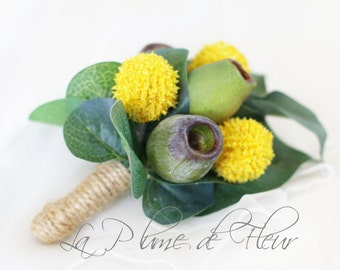 Tenterfield - Billy button and gumnut Men's Buttonhole / Boutonniere with Australian native foliage.